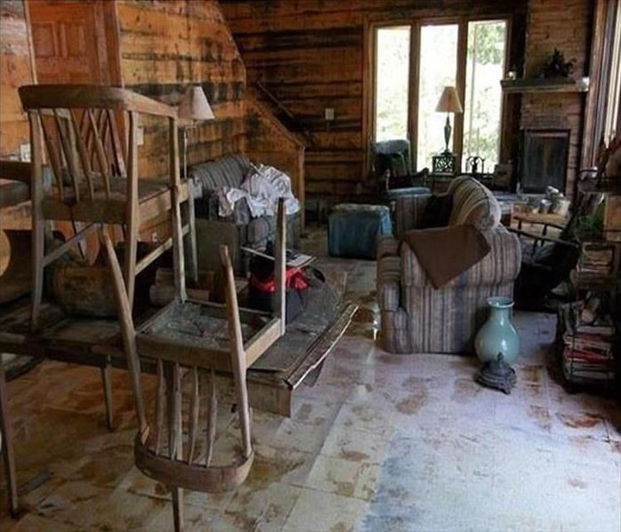 Mold Infested Wilmington Cabin  Before