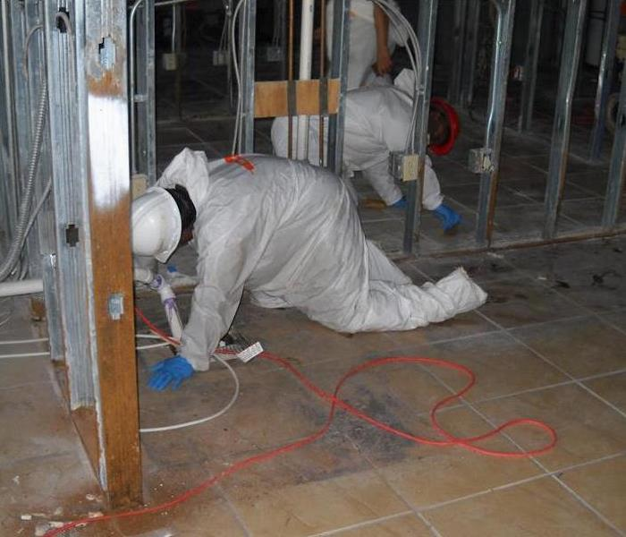 Mold Damage – Wilmington Commercial Facility