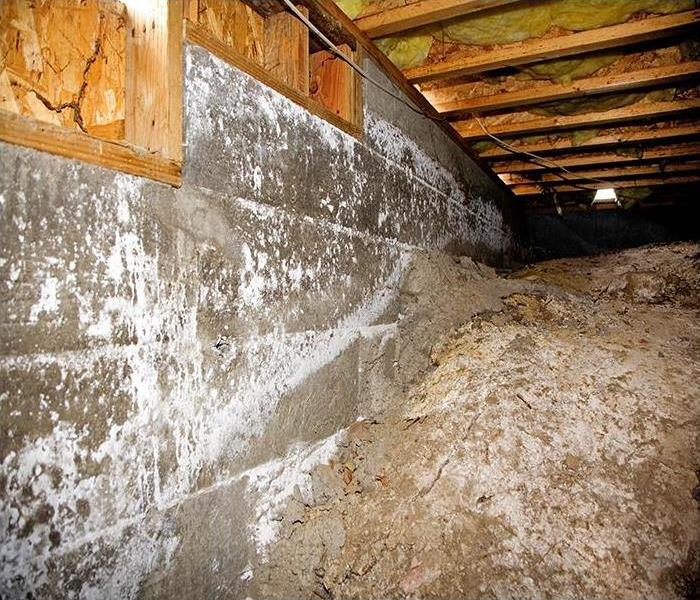 Water Damage A Water Damaged Crawl Space In Carolina Beach Does Not Stand A Chance Against Our Team