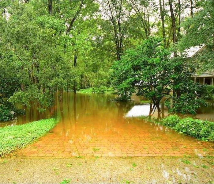 Why SERVPRO Many of the Biggest Problems With Wilmington Flooding Start With Delays