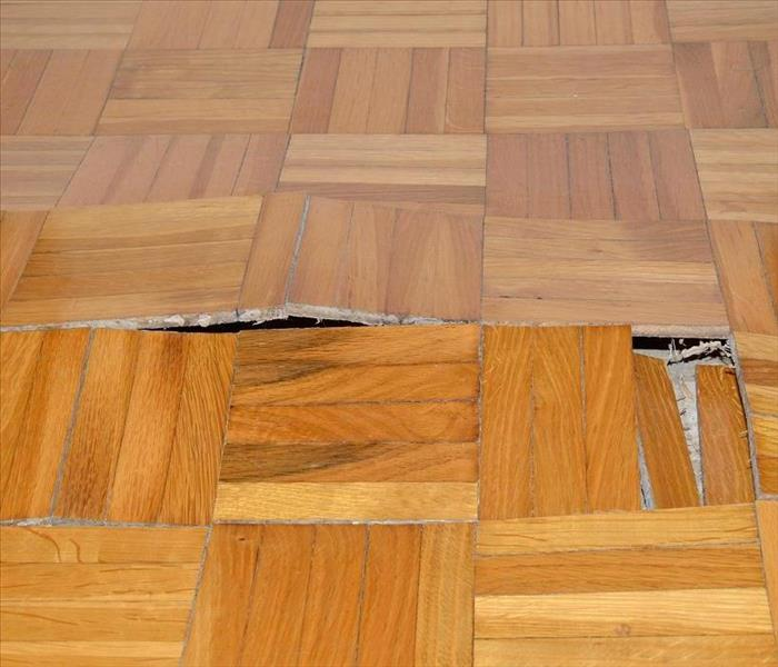 What Causes Buckling And Cupping In Wood Floors: Water Damage Restoration Techniques Used In Wilmington