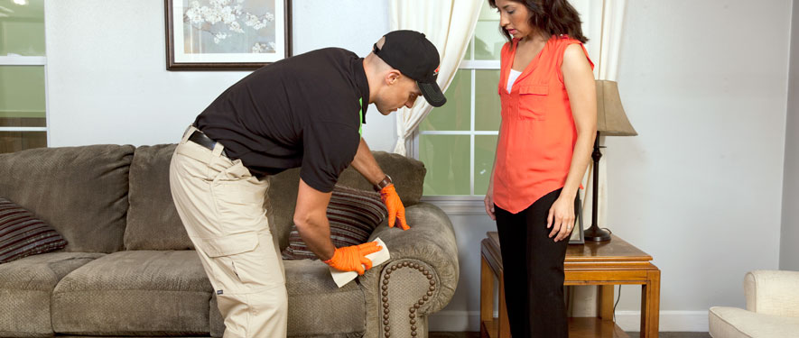 Wilmington, NC carpet upholstery cleaning